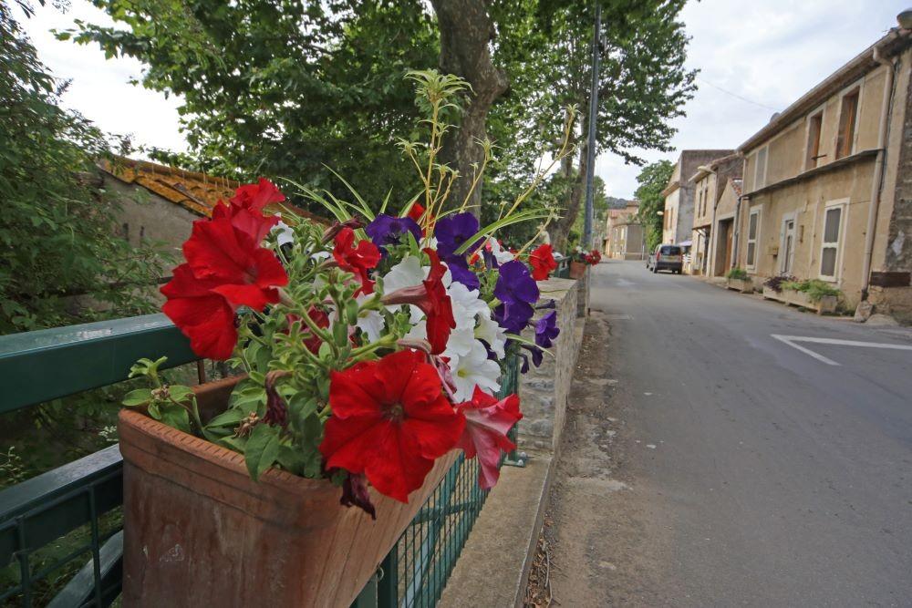 rue fleurie