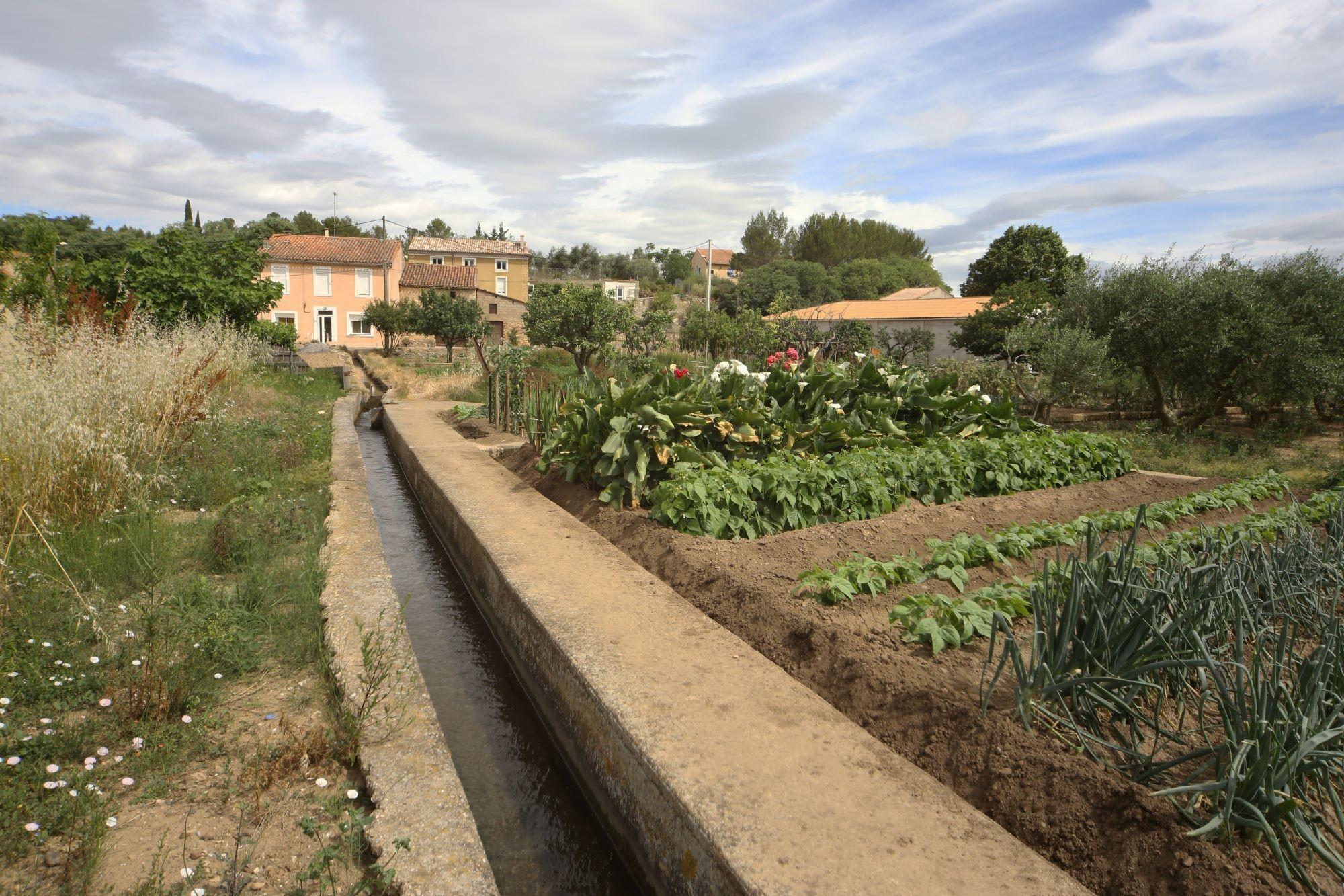les jardins potagers