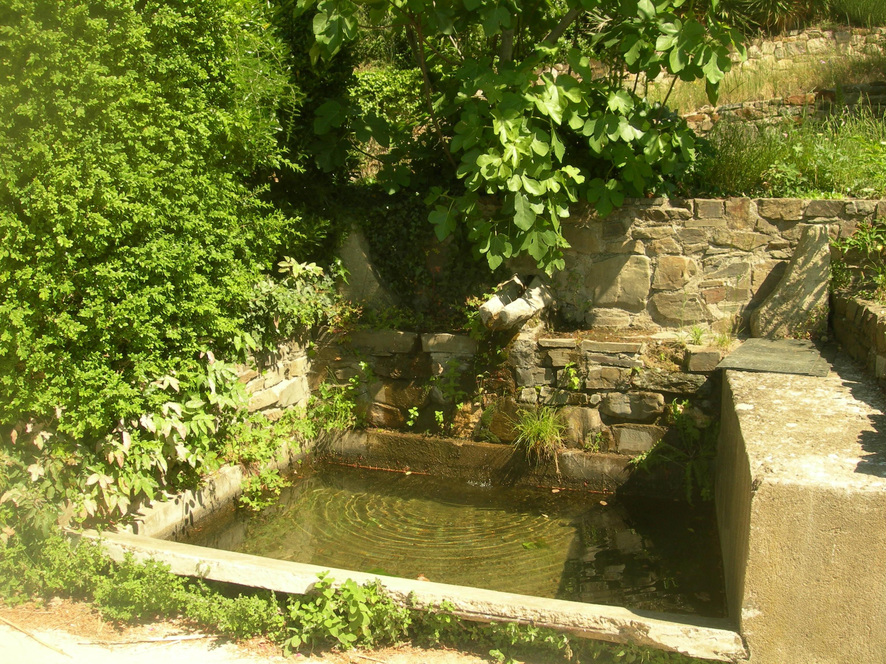 le bassin en pierre de la source